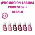PIGMENTO COLOR BURDEOS PARA PRACTICAS 15ML
